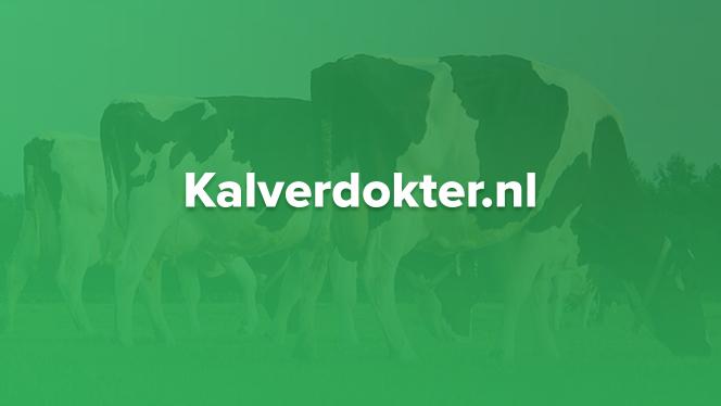 Een nieuwe website voor Kalverdokter.nl