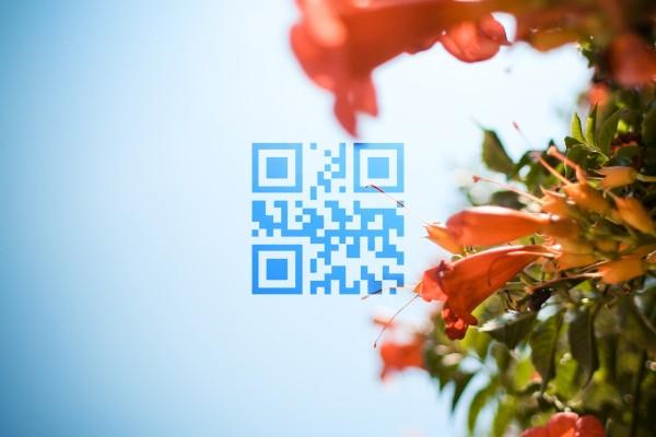 Online tickets de Tuinen van Appeltern