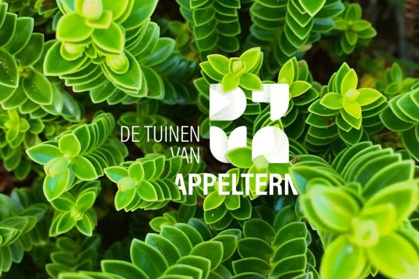 Logo en huisstijl De Tuinen van Appeltern