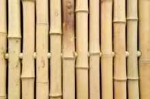 Bamboescherm Xue Mei 180 x 180 cm Geel
