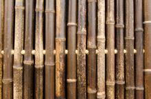 Bamboescherm Nigra180 x 180 cm Zwart