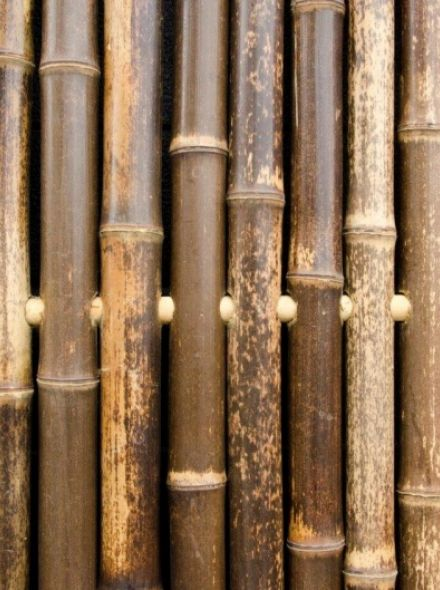 Bamboescherm Xue Mei 180 x 180 cm Zwart