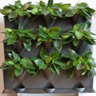 Plantenwand, verticale tuin - voor 9 planten uw eigen verticale plantenwand.