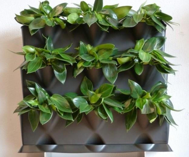 Verticale Drainage Tuin : Verticale drainage tuin fresh best garten und pflanzen images