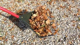 Het onderhoud van grindpaden