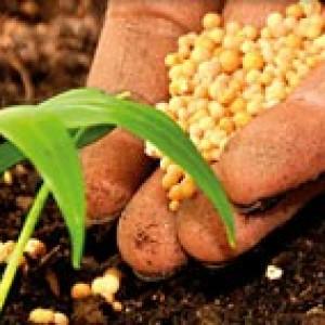 Organisch, biologisch en ecologisch