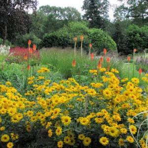 De levende tuin
