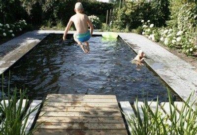 Tuinen In Vorm.Zwemvijvers Zijn Leverbaar In Elke Vorm En Passen In Iedere