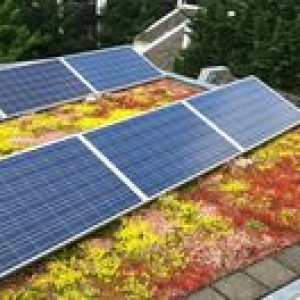 Zonnepanelen voor huis en tuin