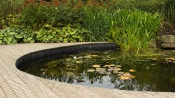Vijvers en fonteinen