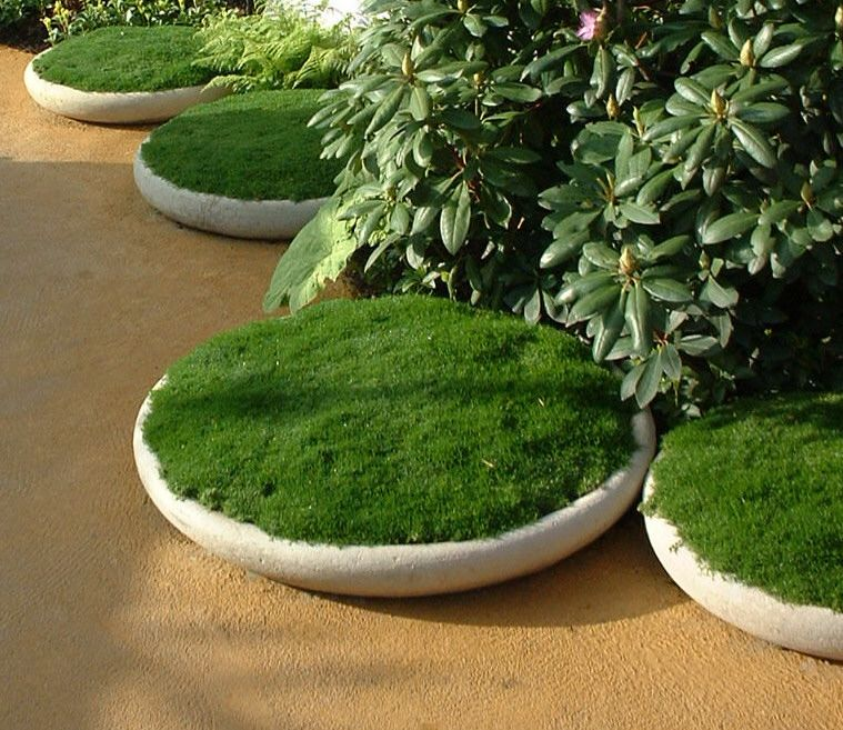 Plantenschaal 70 cm (vogeldrinkbad)