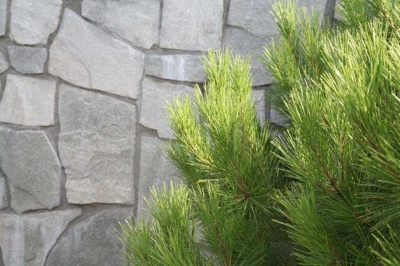 Alta flagstones 2-4 cm dik (m2 - art. 55023010)
