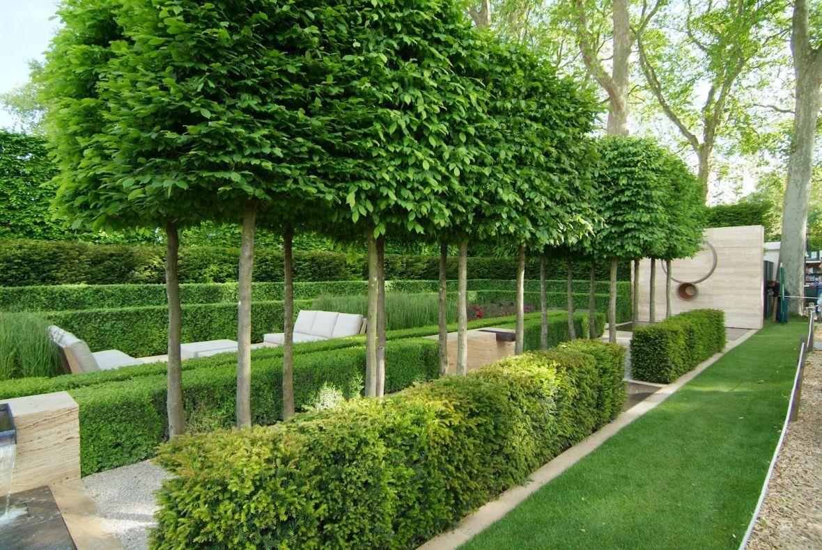 Park Als Tuin : Vormbomen als ruggengraat van uw tuin de tuinen van appeltern