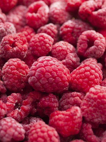 Rubus idaeus 'Autumn Bliss' (Framboos 'Autumn Bliss', Herfstframboos)