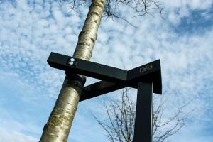 Een stijlvolle boomondersteuning