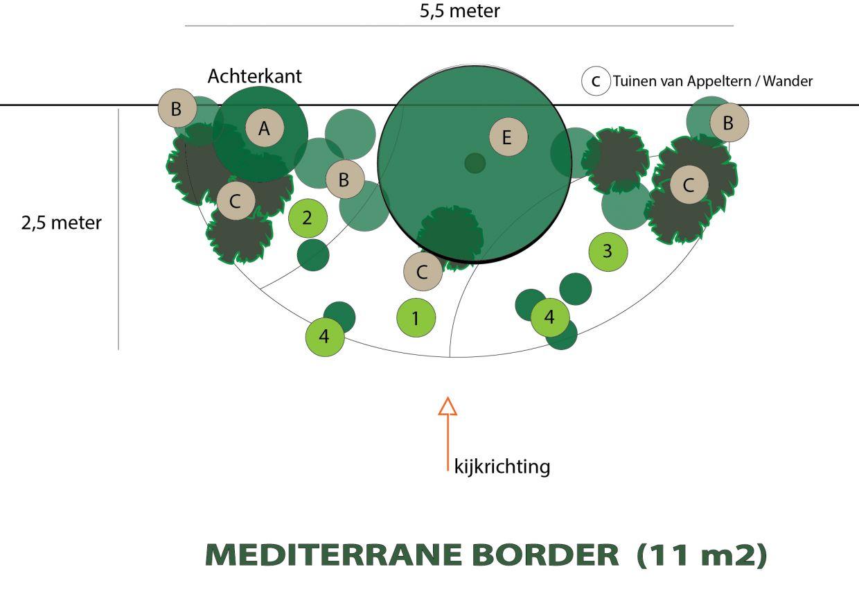 Mediterrane border met veel geur (11 m2)