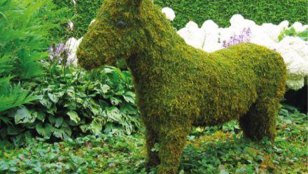 Creatief met mos - Dierenfiguren - tuinornamenten