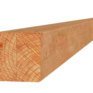 Douglas paal duplo verlijmd 14x14x300 cm blank (Art. 31325)