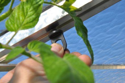 Planthangers zwart (10 stuks)