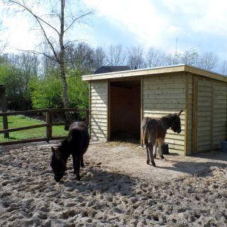 Houten dierenverblijf EZEL 01 (afmetingen 4 x 2 meter)