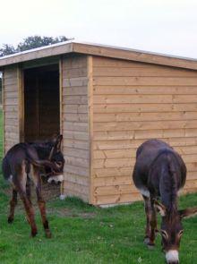 Houten dierenverblijf EZEL 02 (afmetingen 4 x 2 meter)
