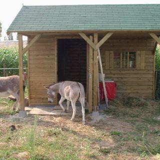 Houten dierenverblijf EZEL 03 (afmetingen 4 x 4 meter)