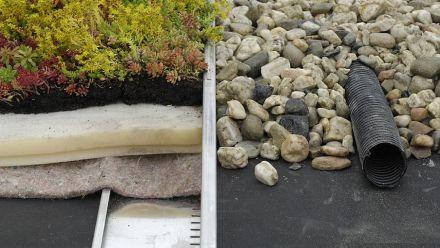 Simplex Groendak Systeem, Sedumroll op schuimplaat (Sedumdak, Sedumrollen, dakbeplanting)