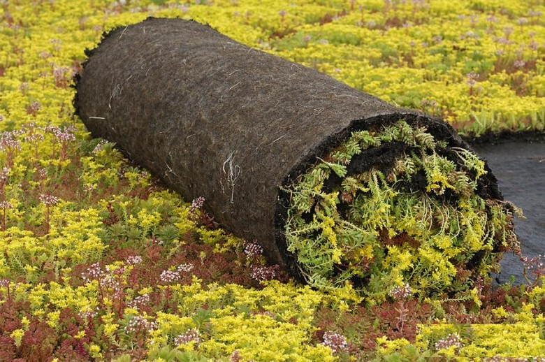 Sedumroll vetplantenmatten (Vegetatiemat, Sedumrol 1.10 x 2.0 meter) Extenso Groendak Systeem