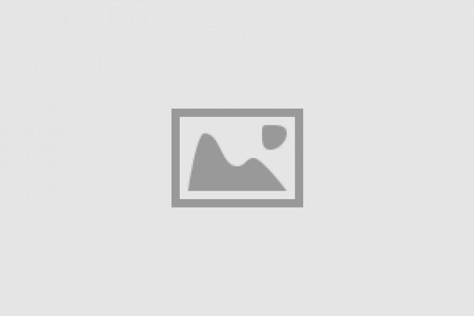Bij- en Vlinder lokkende beplanting bij SVF Cothen