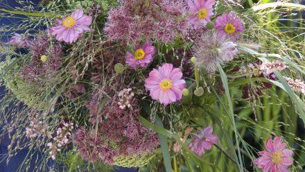Vaste planten voor snijbloemen (Tuinplanten voor op de vaas, Bloemschikken met tuinplanten)
