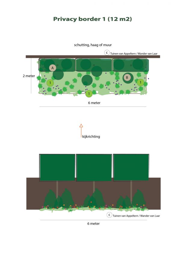 Borderpakket Privacy 1 (12 m2, Groenblijvend)