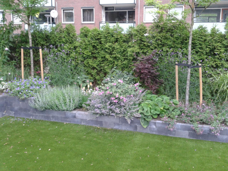 Onderhoudsvriendelijke tuin dutch quality gardens for Vacature tuin