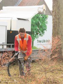 Opheffen van verdichting (Bodemkwaliteit bomen)