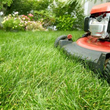 Wanneer dient ingezaaid gras voor het eerst gemaaid te worden?