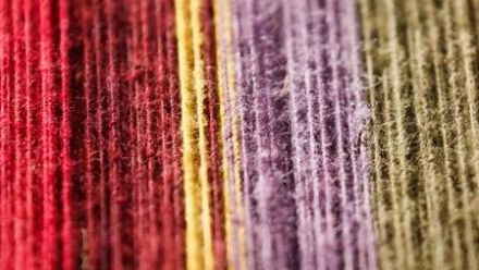 Tuinplanten om mee te verven, verfplanten, Natuurlijke verven (Wol en Textiel)