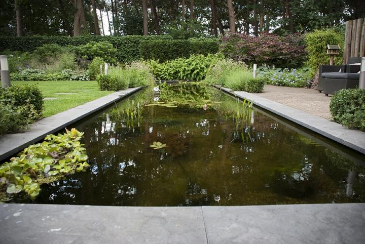 Moderne, bos aangrenzende tuin in Roosendaal