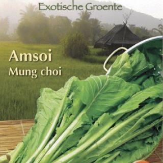 Amsoi Mung Choi (zaad Brassica juncea var. rugosa)