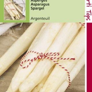 Asperge Argenteuil (zaad Asparagus)