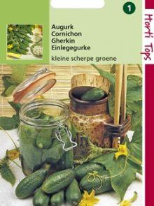 Augurk Kleine Groene Scherpe (zaad kleine augurken)