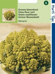 Bloemkool Minaret (zaad Brassica oleracea, Groene romanesco)