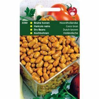 Droogboon Bruine Noordhollandse (Bruine boon, stamboon, 100 gram)