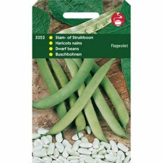 Droogboon Flageolet (Groene droogboon 100 gram)