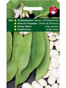 Pronksnijboon Boerentenen (snijbonen zaad 100 gram)