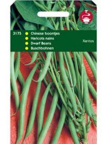 Stamprinses Lipsos (Stamslaboon zaden, Chineese boontjes, extra fijn 100 gram)