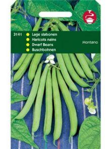 Stamprinses Montano (Stamslabonen zaad 100 gram)