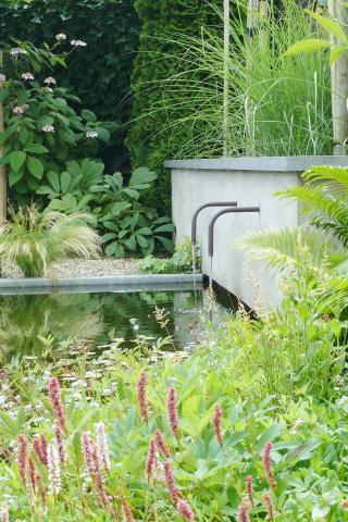 Achtertuin met waterspuwers