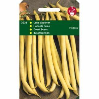 Stamprinses Hildora (Stamslaboon, Wasboon, gele boterboon zaden 100 gram)