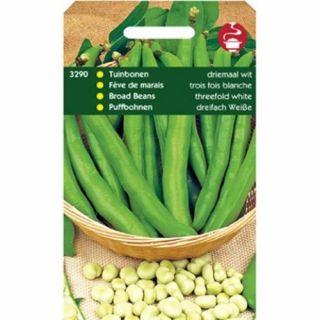 Tuinbonen Driemaal Wit (Vicia Faba 100 gram)