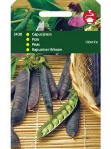 Capucijners Desiree (Stamblauwschokkers 100 gram)