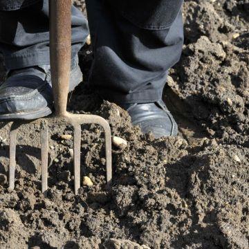 Kan ik in november spitten of de grond verbeteren?